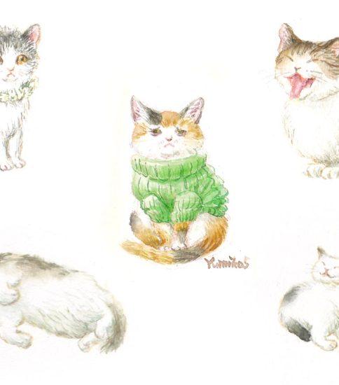 『猫いろいろ』