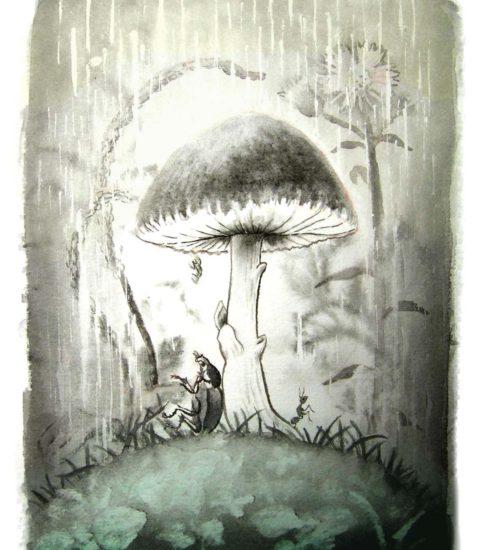 『野原の雨傘』