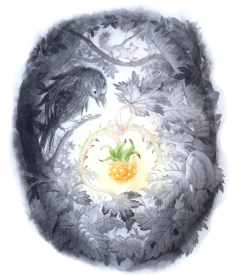 『森のモミジバイチゴ』